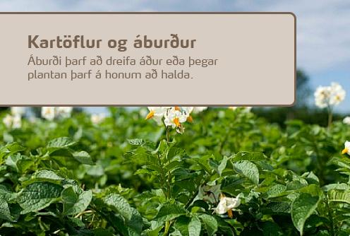 Áburðarnotkun kartöflur